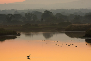 Nominations Open for Ramsar Wetland Conservation Awards 2021