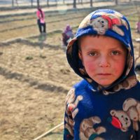 UNICEF seeking EOIs for Development and Empowerment of Adolescents and Youth in Cahul and Ungheni Regions - Moldova