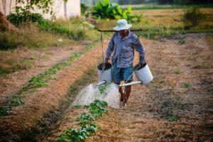 Southern Maryland Farmer Mini-Grant Program – US