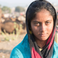UN Women CFPs on gender equality and prevention of violence against women