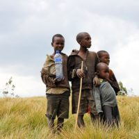 CFPs for ending Child, Early and Forced Marriages under Breakthrough ACTION Malawi