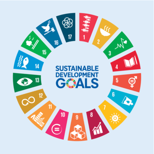 $500,000 Grants and Mentorship from Leading Corporates for Young People working for Sustainable Development Goals