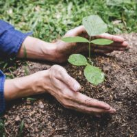 2021-22 Environmental Grants Program - Australia