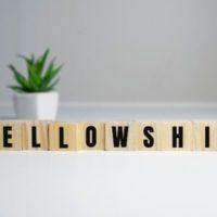 United States: Kurt Weill Dissertation Fellowship