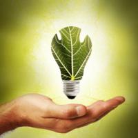 Biodiversity Innovations for Sustainability Improvement at Renewable Energy Plants