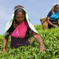 Women Climate Champions: ImpactAim SDG5 Accelerator Programme in India