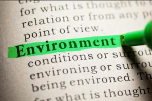 Elizabeth Schultz Environmental Fund Grants – US