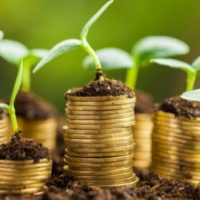 Call for Proposals: Nature Finance Seed Corn Grants (UK)