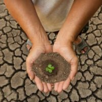 Grants for Research Project on Human Rights Impacts of Climate Change Mitigation and Adaptation Policies/Measures