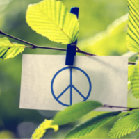 Apply for Competitive Fund for Peace and Recovery